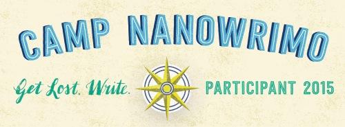 camp nano 2015 participant